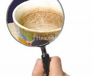 茶杯中的茶垢不清洗要人命